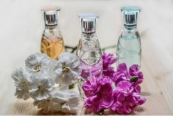 What is fragrance free
